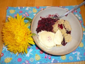 Freshly picked blackberry and apple crumble - delicious!