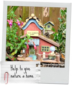 Help to give nature a home