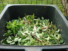 So easy, there really is no reason not to compost!