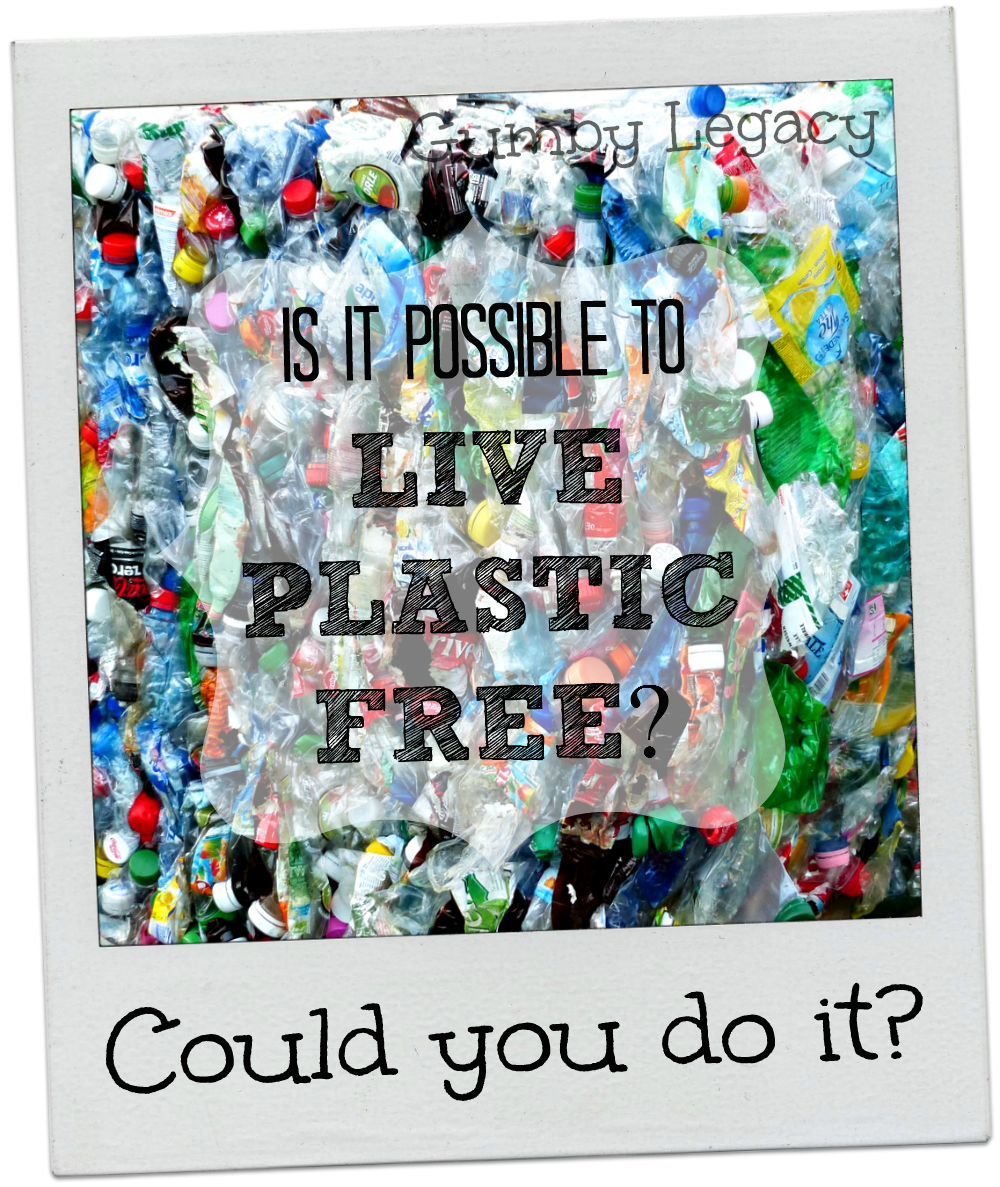 Is it possible to live plastic free? On first thoughts it seems pretty impossible. You can make a difference to our world by trying. Read this to find out how,