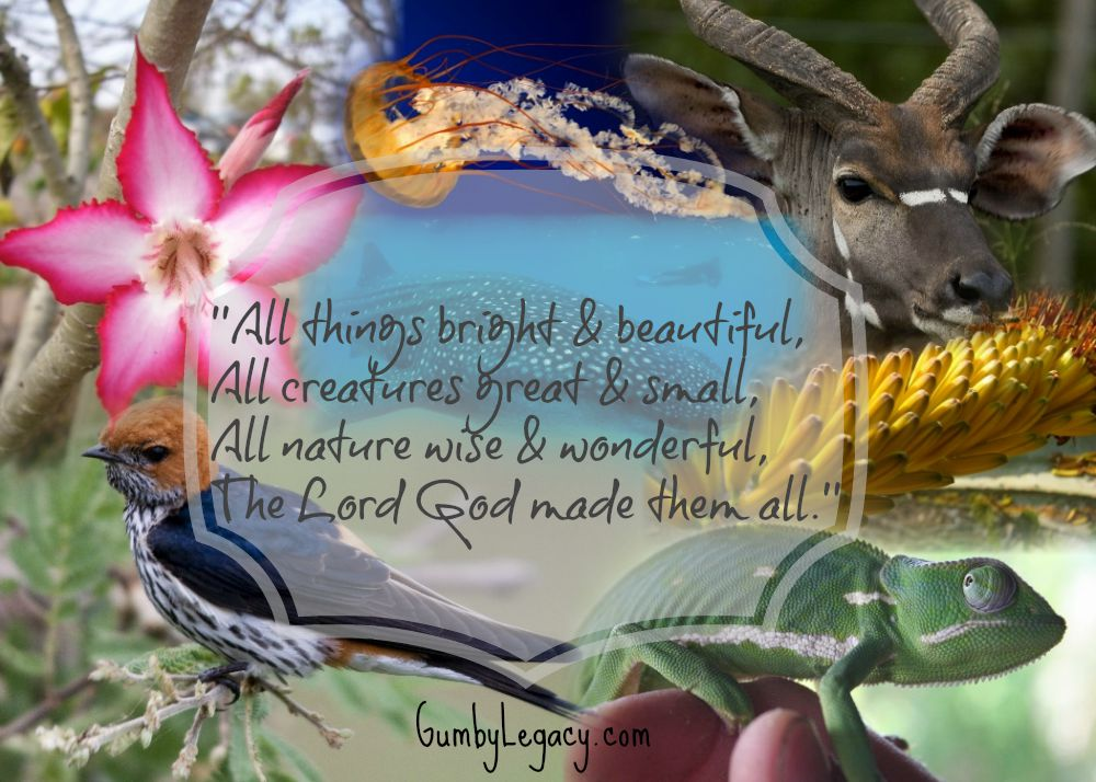 All things bright & beuatiful with words adapted for Jeremy Gumby Brooke