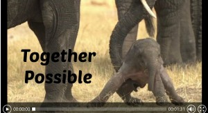 Together Possible