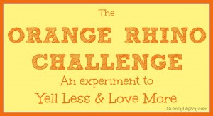 The Orange Rhino Challenge: week 1