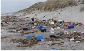 10 reasons why you should care about what happens to rubbish