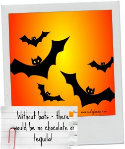 17 facts about bats (without them there would be no chocolate!)